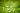 Makroaufnahme eines grünen Seerosenblatts mit Wasserperlen