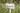 Zitronengrasfeld mit weißem Holzschild mit Aufschrift Lemongras