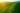 Naturaufnahme von großer Teeplantage im Licht des Sonnenuntergangs