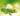 Nahaufnahme eines grünen Teezweigs und drei grünen Kaffeebohnen mit grün leuchtendem Hintergrund